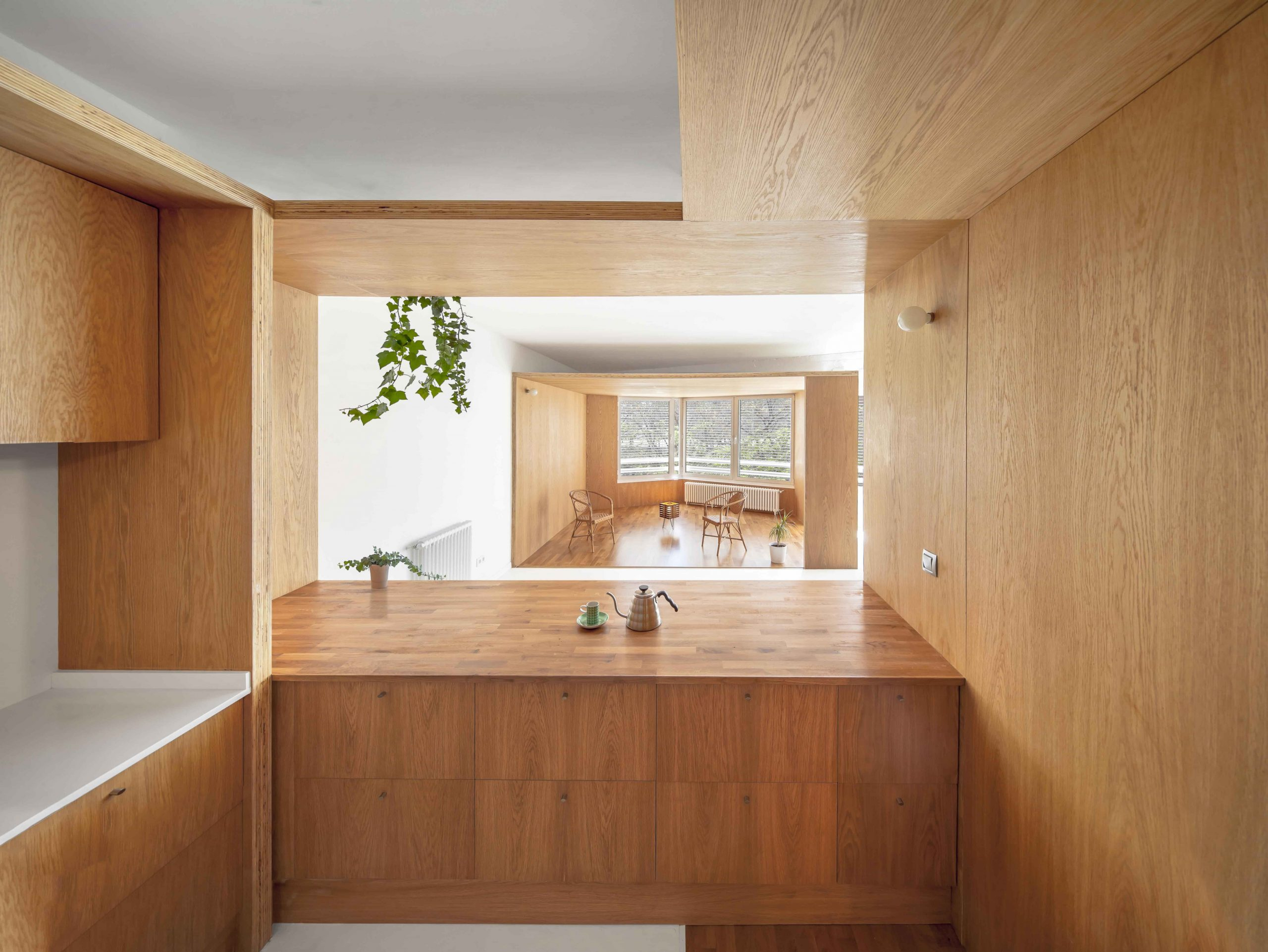 Acceso a la zona común de la rehabilitación arquitectónica del apartamento extenso-intenso en Barcelona